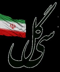 رسانه گروه هنری سی گل
